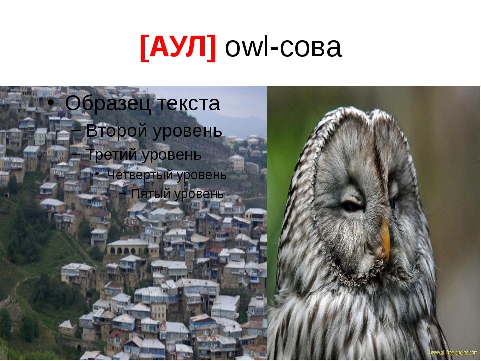[АУЛ] owl-сова