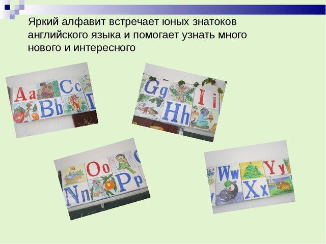 Яркий алфавит встречает юных знатоков английского языка и помогает узнать мно...
