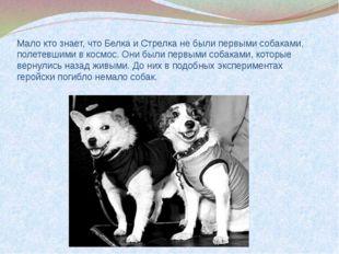 Мало кто знает, что Белка и Стрелка не были первыми собаками, полетевшими в к