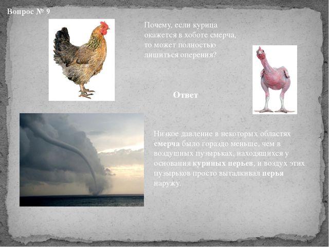 Вопрос № 9 Почему, если курица окажется в хоботе смерча, то может полностью л...