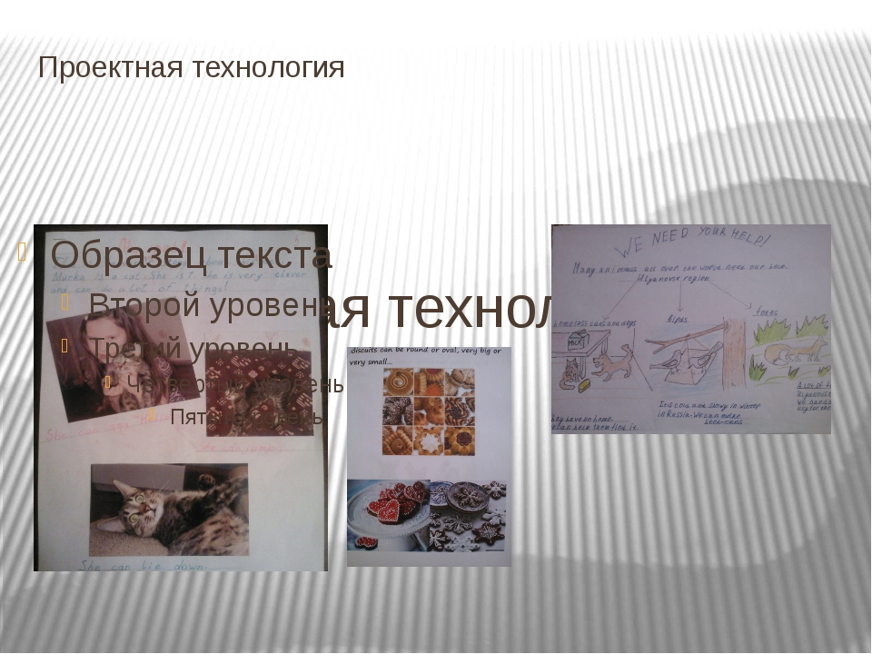 Проектная технология Проектная технология