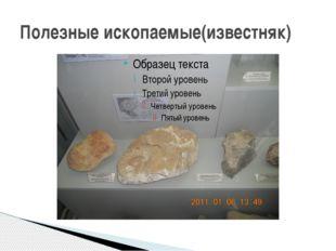 Полезные ископаемые(известняк)