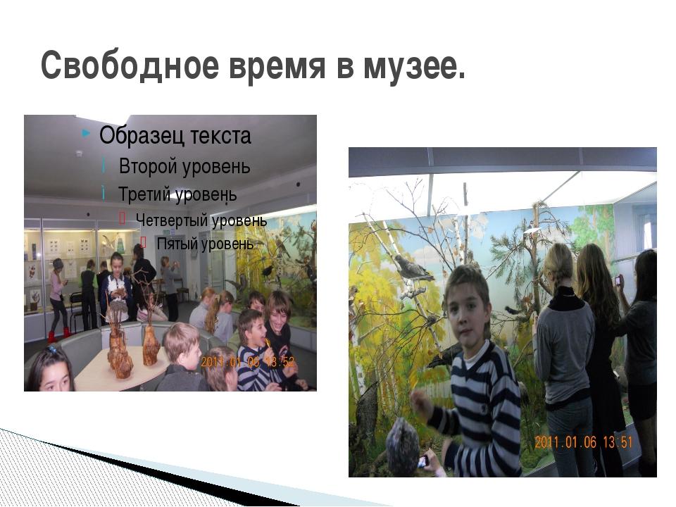 Свободное время в музее.