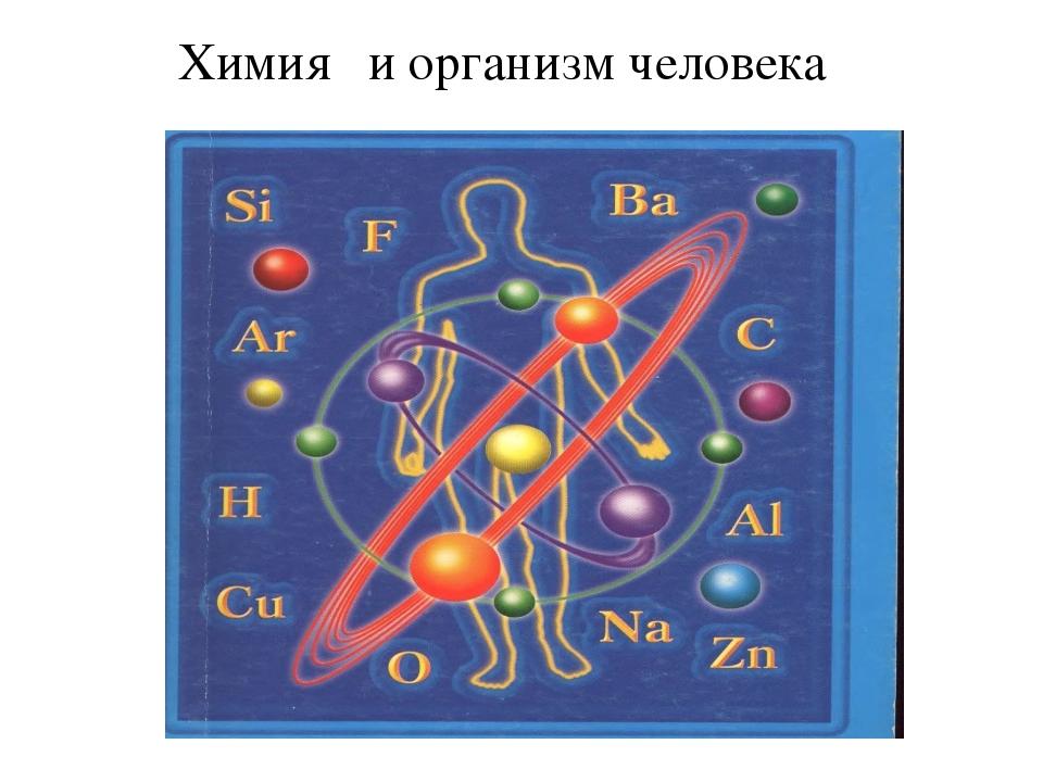 Химия и организм человека