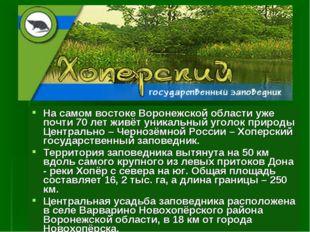 На самом востоке Воронежской области уже почти 70 лет живёт уникальный уголок