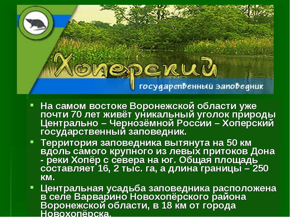 На самом востоке Воронежской области уже почти 70 лет живёт уникальный уголок...