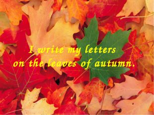 I write my letters on the leaves of autumn.