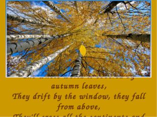 The whole world is covered by autumn leaves, They drift by the window, they f