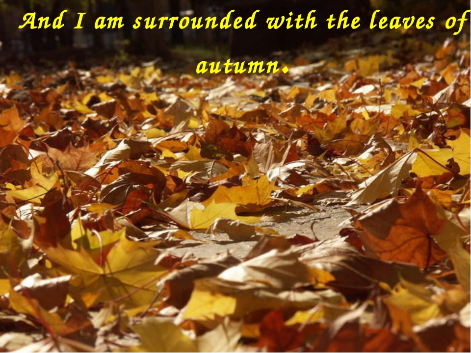 And I am surrounded with the leaves of autumn.