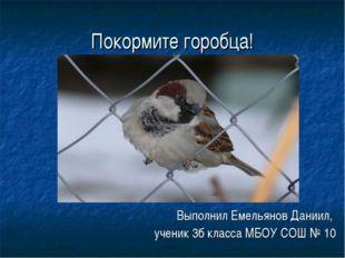 Покормите горобца! Выполнил Емельянов Даниил, ученик 3б класса МБОУ СОШ № 10