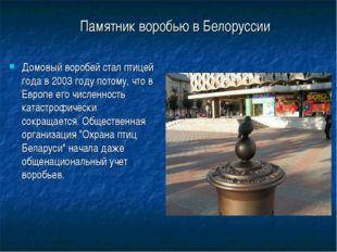 Памятник воробью в Белоруссии Домовый воробей стал птицей года в 2003 году по