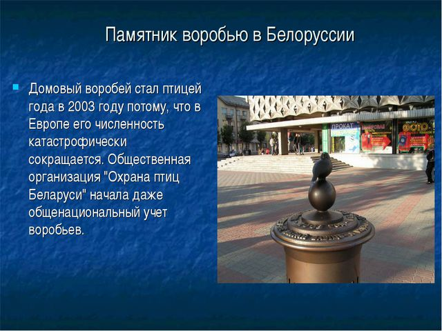 Памятник воробью в Белоруссии Домовый воробей стал птицей года в 2003 году по...