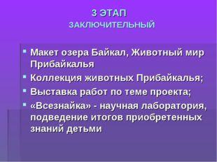 3 ЭТАП ЗАКЛЮЧИТЕЛЬНЫЙ Макет озера Байкал, Животный мир Прибайкалья Коллекция