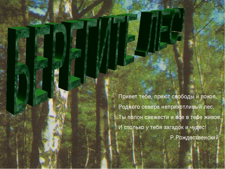Привет тебе, приют свободы и покоя, Родного севера неприхотливый лес, Ты поло...