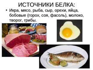 ИСТОЧНИКИ БЕЛКА: Икра, мясо, рыба, сыр, орехи, яйца, бобовые (горох, соя, фас