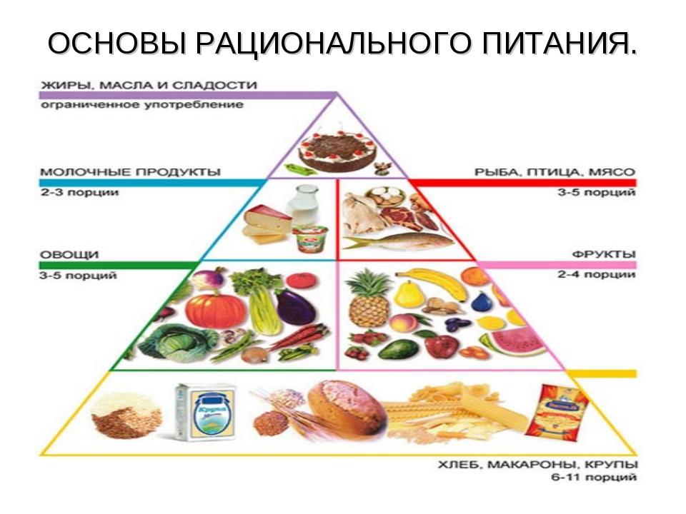 лечебное питание основные принципы презентация