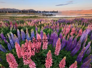 English which is spoken in New Zeland is often called … English 1. Sparrow 2.