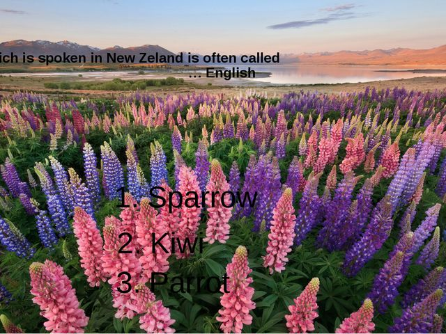English which is spoken in New Zeland is often called … English 1. Sparrow 2....