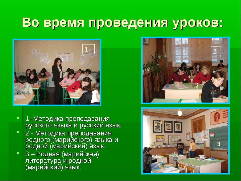 Во время проведения уроков: 1- Методика преподавания русского языка и русский...