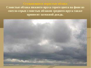 Сгущающиеся перистые облака Слоистые облака нижнего яруса серого цвета на фон
