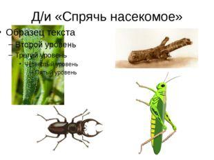 Берегите насекомых! Муравей нашел былинку, Много было с ней хлопот. Как бревн