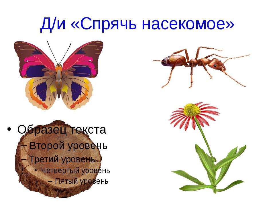 Знаешь ли ты… Самые большое сооружение построенное насекомыми – термитник. Са...