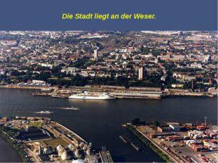 Die Touristen besuchen Bremen gern und bewundern hier die Sehenswürdigkeiten.