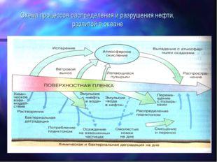 Схема процессов распределения и разрушения нефти, разлитой в океане