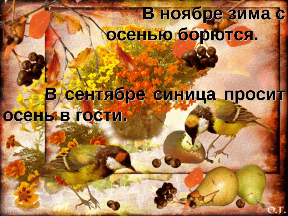В сентябре синица просит осень в гости. В ноябре зима с осенью борются.