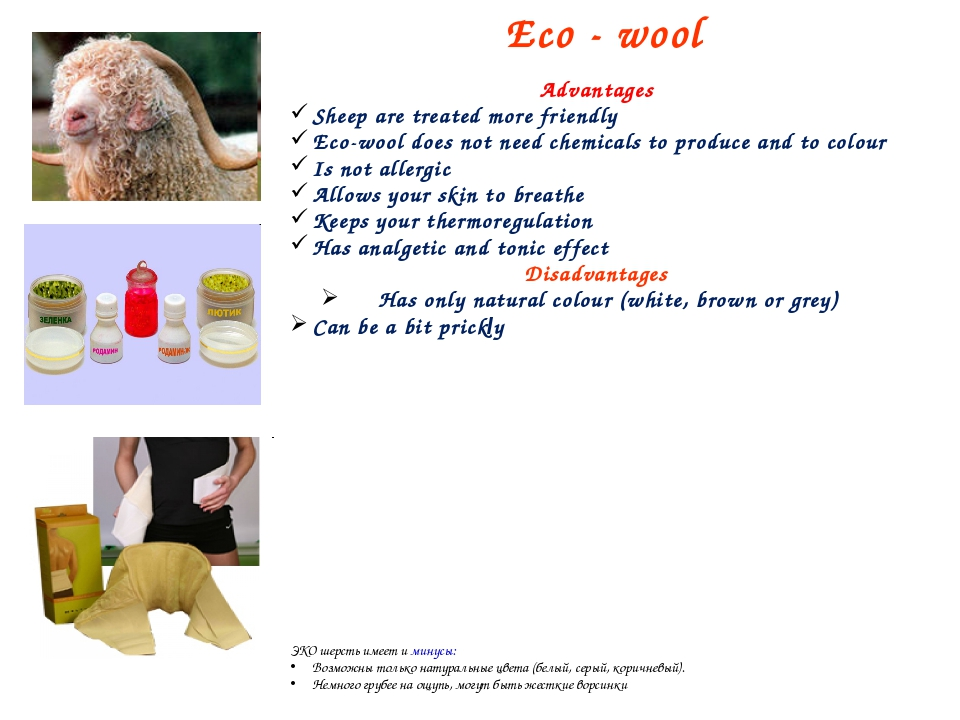 Eco - wool Advantages Sheep are treated more friendly Eco-wool does not need...