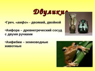 Двуликие Греч. «амфо» - двоякий, двойной Амфора – древнегреческий сосуд с дв