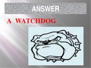 ANSWER A WATCHDOG