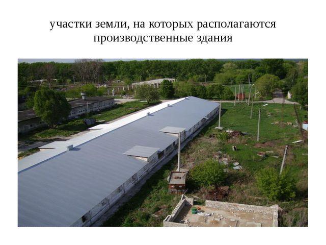 участки земли, на которых располагаются производственные здания