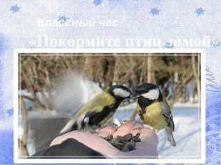 Классный час «Покормите птиц зимой»