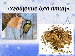 «Угощение для птиц»