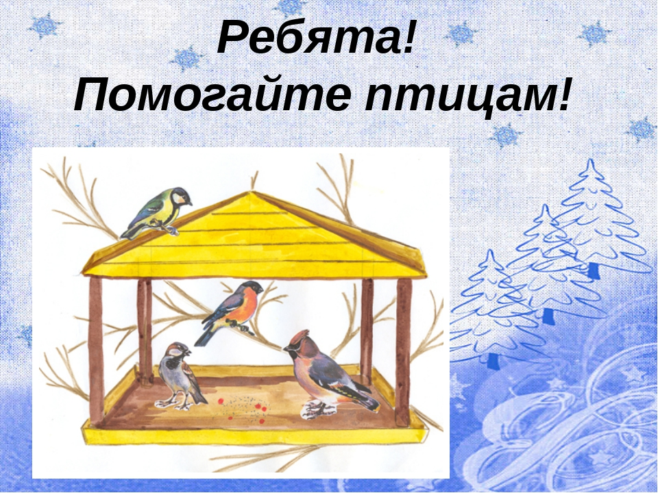 Ребята! Помогайте птицам!