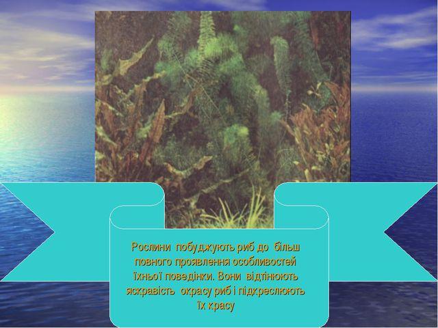 Рослини побуджують риб до більш повного проявлення особливостей їхньої поведі...
