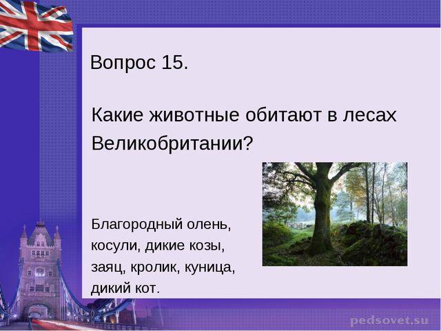 Вопрос 15. Какие животные обитают в лесах Великобритании? Благородный олень,...