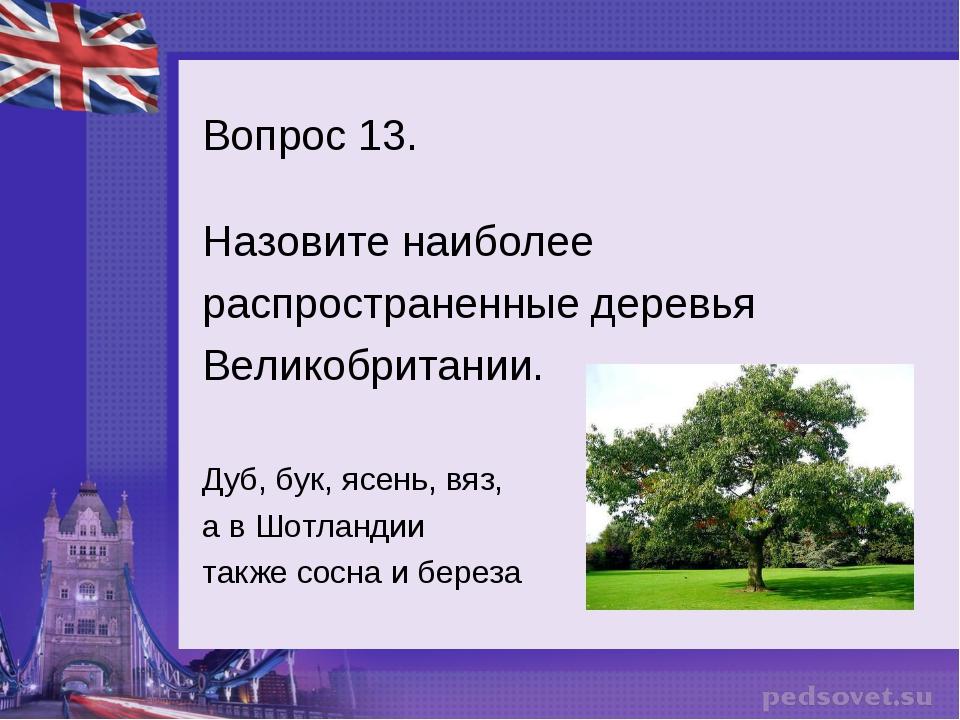 Вопрос 13. Назовите наиболее распространенные деревья Великобритании. Дуб, бу...