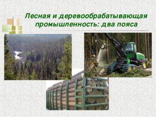 Лесная и деревообрабатывающая промышленность: два пояса