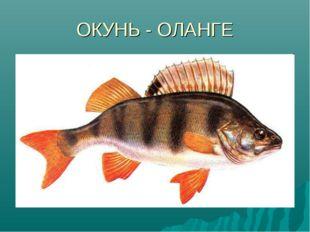 ОКУНЬ - ОЛАНГЕ