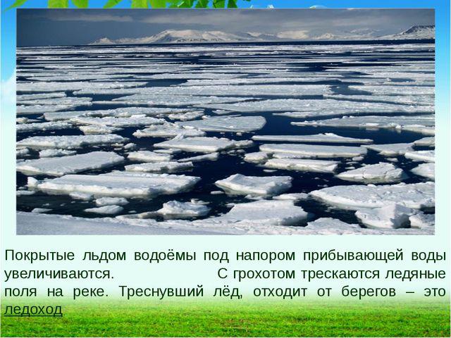 Покрытые льдом водоёмы под напором прибывающей воды увеличиваются. С грохотом...