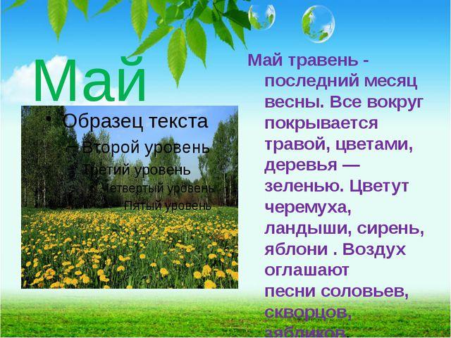 Май Май травень - последний месяц весны. Все вокруг покрывается травой, цвета...
