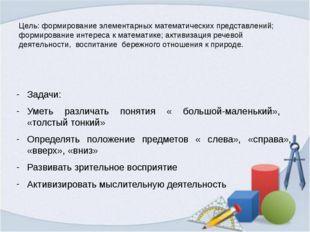 Цель: формирование элементарных математических представлений; формирование ин