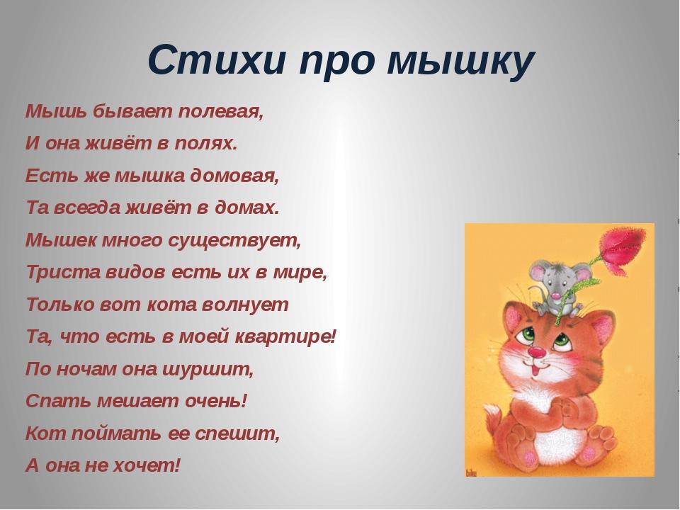 стихи для детей про мышку этом, пожалуй, закончу