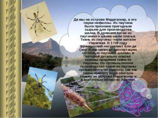 Да мы на острове Мадагаскар, а это пауки нефиллы. Их паутина была признана пр