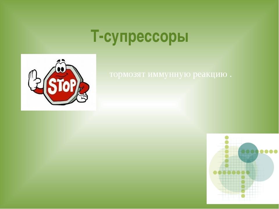 Т-супрессоры тормозят иммунную реакцию .