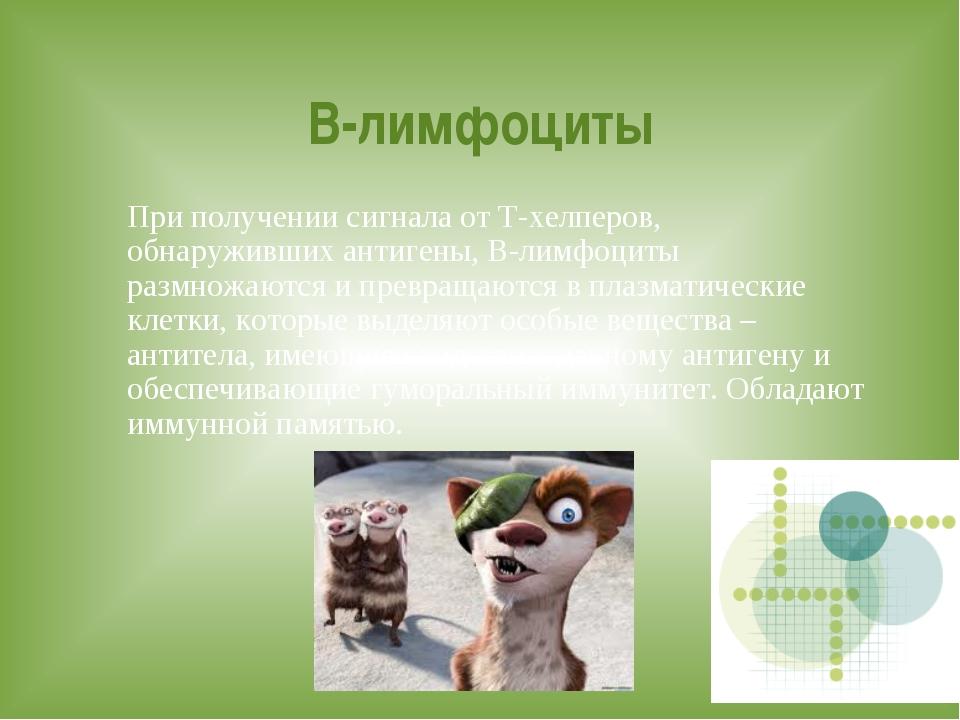 Презентация по биологии иммунитет 8 класс