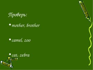 Проверь: mother, brother camel, zoo cat, zebra