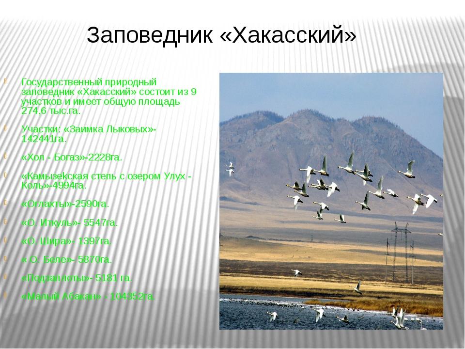 Государственный природный заповедник «Хакасский» состоит из 9 участков и имее...